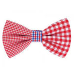 FASTION BOW TIES